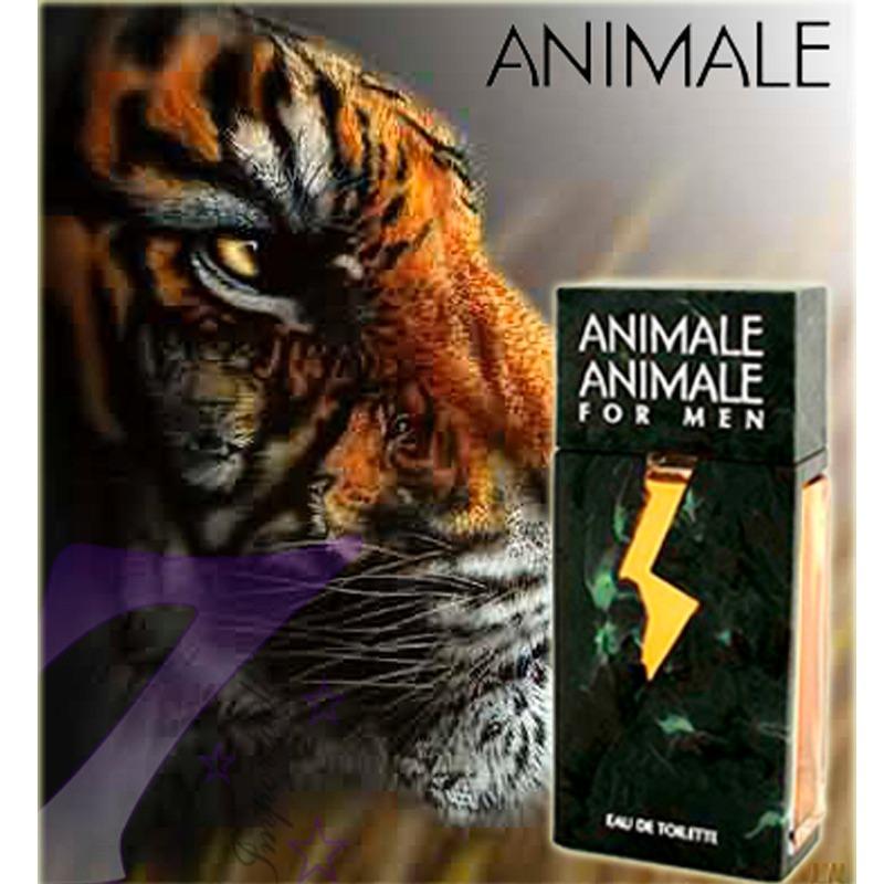 perfume-masculino-animale-animale-for-men-importado-usa-6283-mlb5045365727_092013-f_1